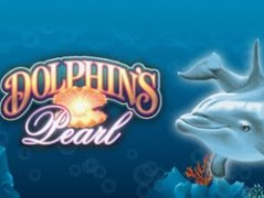 online casino mit book of ra dolphin pearls